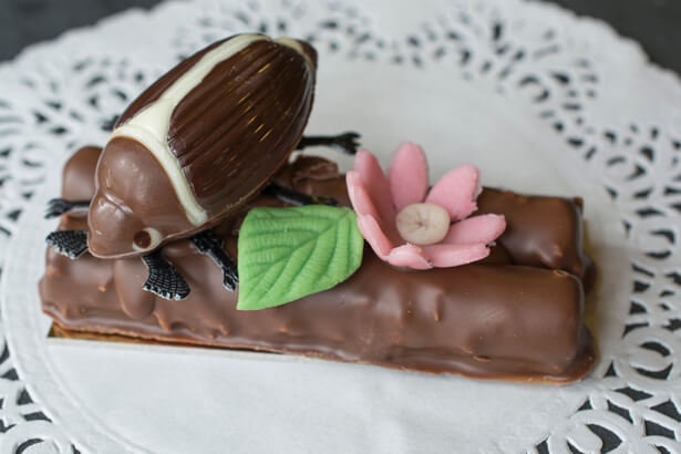 Maikäufer aus Schokolade mit Branchli